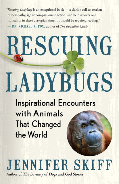Rescuing Ladybugs Cover.jpeg