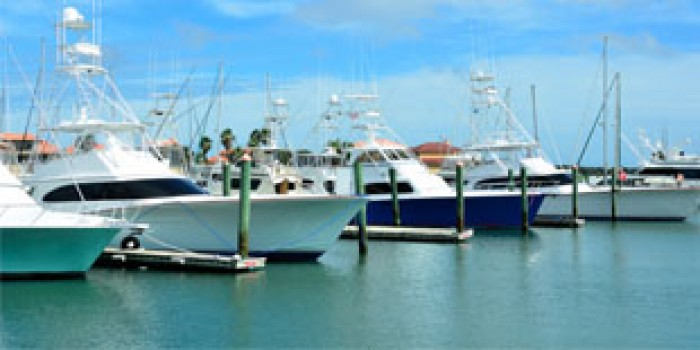 Charters and Boat Rentals