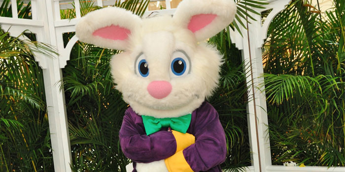 The Gardens Mall - A Virtual Visit with the Easter Bunny Tomorrow