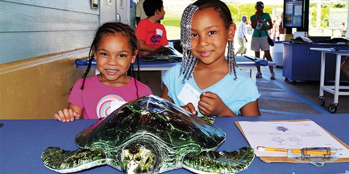 Loggerhead Marinelife Center's 2018 Fall/Winter Seasonal Camps Begins September 3rd