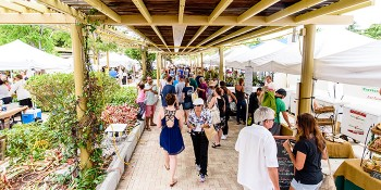 West Palm Beach GreenMarket Continues Growth and Branches Out