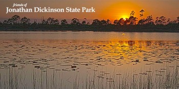 Friends of Jonathan Dickinson State Park to Host Special Photography Class