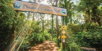 Protecting the Future of Florida Wildlife