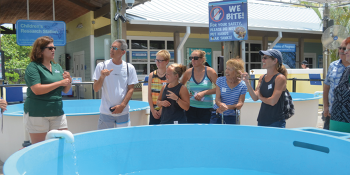 American Sign Language Tours Now Offered at Loggerhead Marinelife Center