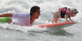 3rd Annual Hang 20 Surf Dog Classic Returns Just In Time For The Holidays