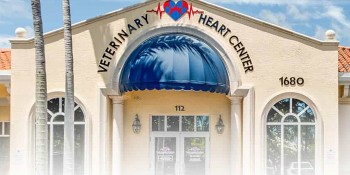North American Veterinary Heart Center In Jupiter Florida Sets Global Standards