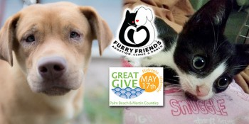 Furry Friends to Hold 24-Hour Online Giving Event